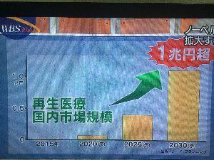 4594 - ブライトパス・バイオ(株) これからの日本の再生医療の未来に期待します‼️   大好きな山中伸弥教授に期待します‼️    ブラ