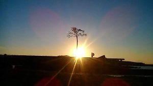 発信元 陸前高田から 陸前高田 奇跡の1本松の夕暮れ😔