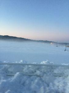 福井を離れて・・・ まみままさん、福井とは大違いの雪一つない京都の竹林。いいですねー。 懐かしいお友達との再会、これもS