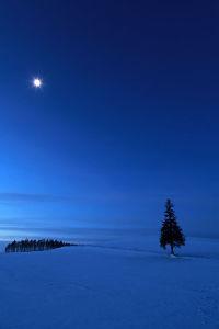 1552 - 国際のETF VIX短期先物指数 ◎ 夜明け前が一番暗くて寒いのよネ❕  🤗