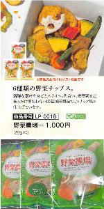 9035 - 第一交通産業(株) 【 株主優待 到着 】 1,000円分から選択した 「6種類の野菜チップス(3袋)」 ー。