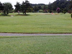 中高年ゴルフ(関越、東北、常磐道沿線) 練習ラウンド  あと2名募集します  ゴルフ場名      :  リバーサイドフェニックス  プレー