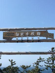 大阪の中年バイカー募集 おはようございます。 先日の焼鳥ミーティングは楽しいものでした、次回飲み会も都合付けて皆さんが参加下
