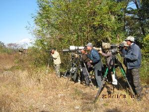 野鳥 徒然なるままに( ^^) 今日11/18は驚きの人数  突き当たりには何とこんなにカメラとおじさん達 夢中なので 挨拶言葉に返