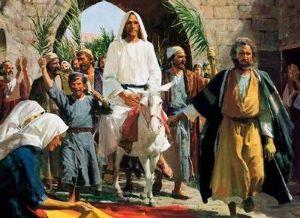 信仰心 ユダヤ三大祭 Ⅱ   [七週の祭り(シャブオット)]   出エジプト記23章16節  「あなたが畑に
