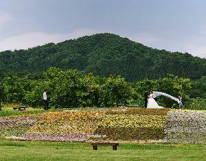 ☆東北の写真仲間大募集!!☆ 春野さん、こんにちは。  おお、すっかり緑。そちらも初夏ですね~  >1.7とは&hellip