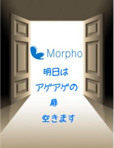 3653 - (株)モルフォ 明日