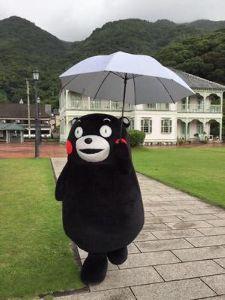 こんにちは^^ みなさん おはようございます  今朝は 雨ですよ  家で おとなしく お留守番してましょうか  みな