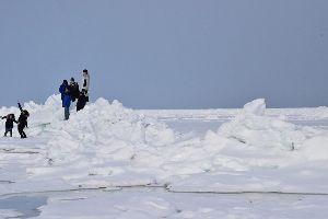 50代、60代の新天地 おたまさん 函館は今年は雪が多いですね~ 除雪費の出費は想定外でしょうか(笑 オホーツクは吹雪もなく