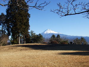 50代、60代の新天地 毎日豪雪のニュースを見るたび北海道はどうかなと心配しています。 こちらもこちらなりに寒いのです。朝は