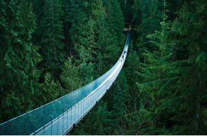 8729 - ソニーフィナンシャルホールディングス(株) 長い吊り橋  渡りきれるかな?