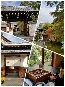 モーショウの部屋 東福寺の近くのお寺で 昼の餌  派手さは無いけど お庭を見ながら ゆったりと…  先程