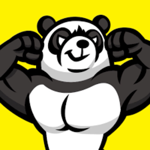1322 - 上場インデックス中国A株 E FUND CSI300 はーいパンダだよー