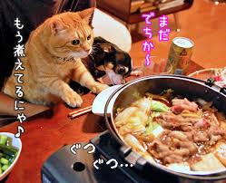 3606 - (株)レナウン 今日の食事は、牛丼ではなく、松坂牛のすき焼きだと言わせるような展開を期待します。