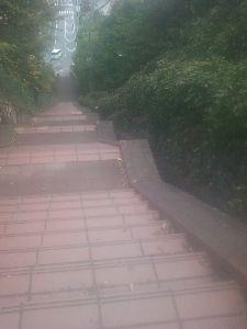 日々感じたままに かなりの跳躍力です 階段