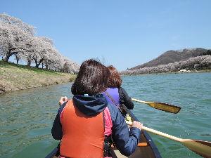 那珂川でカヌー! ご無沙汰しております、こちら東北でもカヌーシーズンの開幕です。 昨日は満開の桜の中、とても楽しい川下