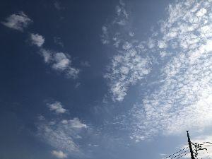 お友達になって下さい。 おはようございます、  昨日は昼頃からお空が怪しくなり雨が降りそうよ  というお言葉で、そうそうと出
