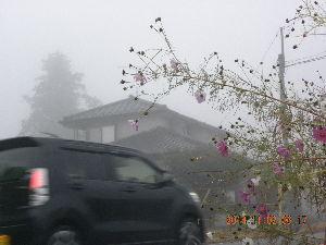 お出かけ友♪ 雪が降ったり霧が出ると見慣れた景色も魅力を増す 女性と同じ? 化粧を変えると惹かれるかなぁ~~・・・