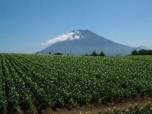 いらしゃ~~い !! 22日にニセコの昆布温泉にオープンした鶴雅グループの「杢の抄」に行って来ました。  http://w