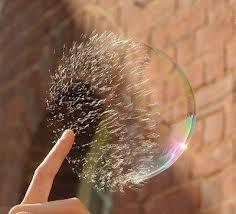 4974 - タカラバイオ(株) バブルは弾ける♪