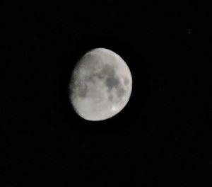 出来るうちに畑仕事をしたい     ◆中秋の名月の件◆   今宵は中秋の名月の筈のところ、曇っていてお月様は拝めぬとの予想です。