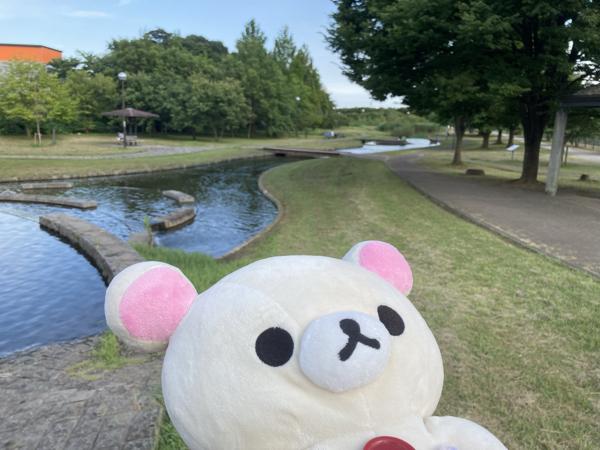 4596 - 窪田製薬ホールディングス(株) 50万円の間違い