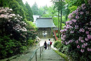 友だちになりませんか? 皆さんお早うございます。  徳島駅で待ち合わせをして、 友達夫婦を18番札所恩山寺に、昔はこのお寺は