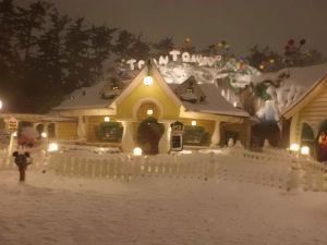 バイクも好き、お酒も好き 土曜日は凄い雪でしたね。 あの猛吹雪のなか、ディズニーランドに行ってました。 ホテル予約しちゃったか