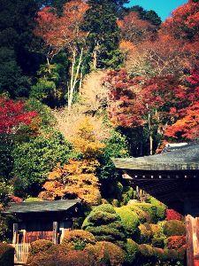 40代のページャー挑戦!! 四年前の写真。  栃木県の雲巌寺。