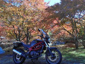 バイク好き「大人の遠足~」関西発 今晩はらくちゃんデス、 寒さが一段と増した今日 「三ツ矢サイダー源泉(篭坊)」の紅葉へ。
