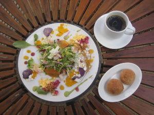 バイク好き「大人の遠足~」関西発 彩都 ファーマーズキッチンでランチ 食美健康サラダです