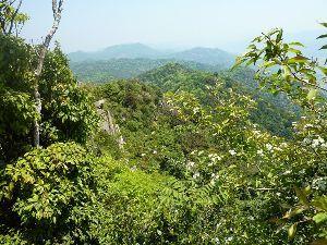 山歩きしませんか 「右田ヶ岳」山歩き  GW初日、五月晴れの陽気に誘われて「右田ヶ岳」に行って来ました。 最長で9連休