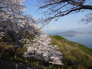 4611 - 大日本塗料(株) 大日本塗料に春が来た。