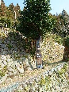 遠江国亀久保村長郷(周智郡森町亀久保497) 森町癒しの家の看板を目立つところに設置しました、この看板はある有名な芸術家の作品です、 木に書いて彫
