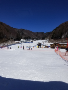 放置トレーダーの憩いの場 コラー(; ・`д・´)  今日はスキー天気サイコーです (^-^ゞ