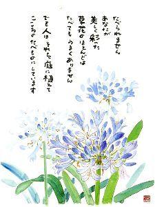 あなたの笑顔に出会いたいd(*⌒▽⌒*)b ニコニコッ 星野富弘さんの詩