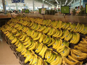9268 - (株)オプティマスグループ 猿vsミニオンでOK? バナナの取り合い