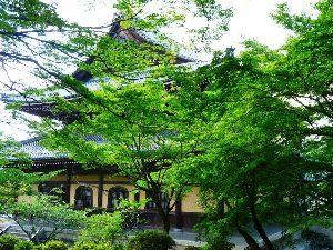 一枚の写真から 先日京都に行きましたら南禅寺の山門あたり涼しい風が吹き気持ちよかったです。  梅雨時大阪は雨模様です