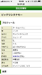TOSのギャンブル日記 この競走馬ってこてこての名古屋弁やん… しかも年寄りしかつかわないなもー😰 あとたわけ