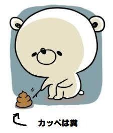 6172 - (株)メタップス > 実際、het(ぷぷぷ)は刑務所経験済みの屑である。 > 知性と教養を求める方が無理っ