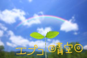 2311 - (株)エプコ .