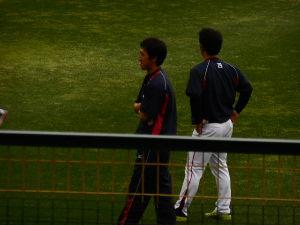 背番号29小川投手を応援するだっち。 大事なくてホッ