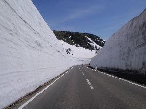 岩手県内でスキースポーツを楽しむ中高年の茶会 こんばんは。 25日(土)~26日(日)八幡平温泉郷に泊まりながら八幡平アスピーテラインの雪回廊と県