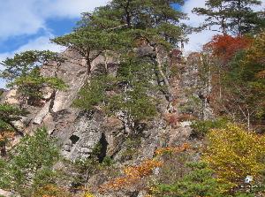 希望 ♪ 秋深し 岩も紅葉 絶景かな  樹木の紅葉に誘われて 岩まで紅葉して