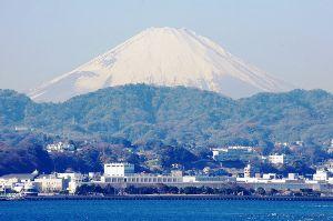 日本の皆様 よろしく     冬のですがこんな格好です。     http://jpdo.com/s100jpdo/70/