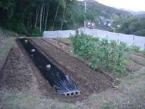 家庭菜園 始めました ^^v 今日は畝を作り。。。マルチを貼って  風よけのシートも張りました ^^v  マルチには白菜、キャベツ