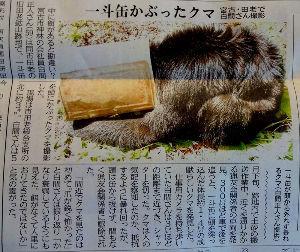 60歳になりました♪ オッハヨウさんです^^  朝刊に熊さんの災難の記事が載っていました。 よっぽど腹が減っていたんでしょ