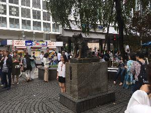 埼玉県北で登山仲間探してます(^^v 渋谷は相変わらず凄い人で、クラクラしました。(汗)