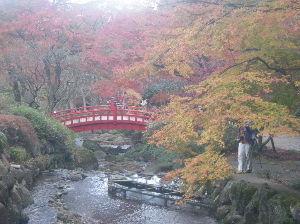 埼玉県北で登山仲間探してます(^^v こんばんは~ 実は先日のルート、この両神山からの眺めから思いついたんですよ♪ 何となく尾根が一部伐採
