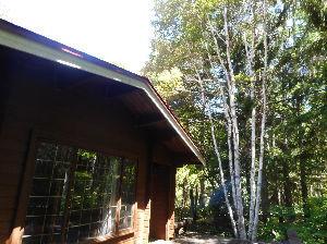 埼玉県北で登山仲間探してます(^^v 束の間の避暑から戻るとまたまた灼熱地獄 八ヶ岳の登山口近くのご招待して頂いたお宅はお庭が2000㎡も
